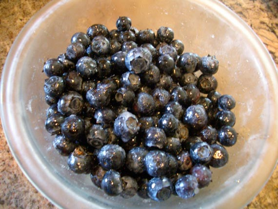 Pic_1_blueberry.jpg