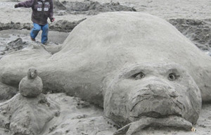 Elephant Seal That Appeared Stranded At Candlestick Point In Good Condition