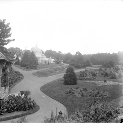 Golden_Gate_Park_1906.jpg