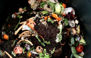 Get Up To 5 Gallons of Free Compost This Saturday