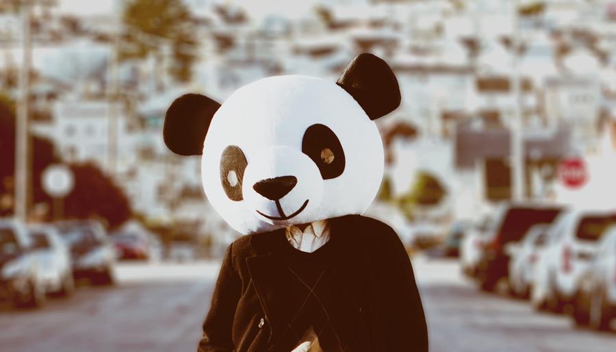TPO_Panda_solo.jpg