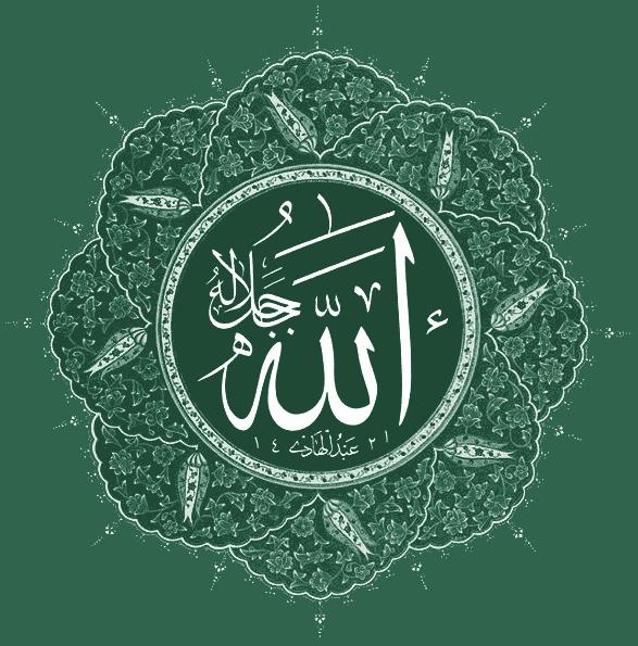 Bay Area Muslims Braced For Retaliatory Attacks Following Boston Bombings