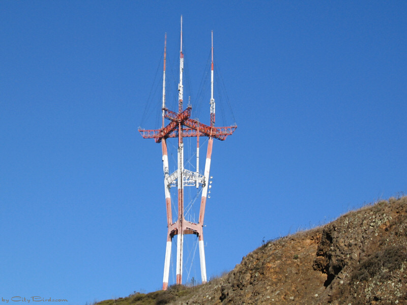 Happy Anniversary! Sutro Tower Celebrates 40 Years