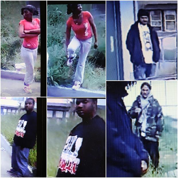 suspectsdogfight