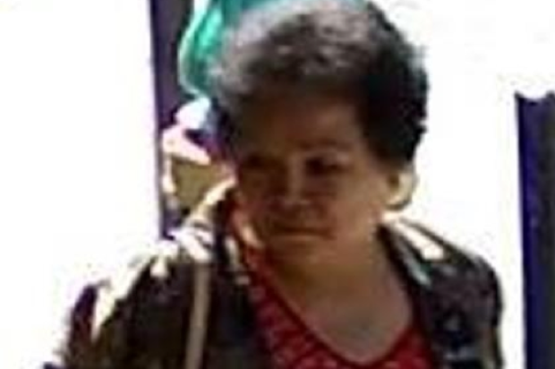 Chinese Woman Suspected of Running Blessing Scams Detained in New York