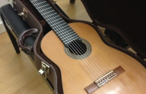 Valuable Guitars Stolen from Conservatory of Music