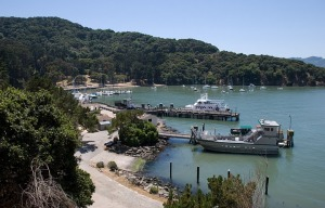 Angel Island Closed This Weekend Due to Waste Water Overflow