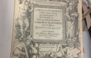 Feds Return Stolen Antique Books to Italian Government