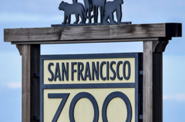 SF Zoo Honors Vets and Military Personnel with Free Admission on Veterans Day