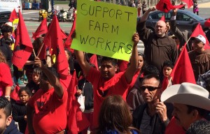 United Farm Workers Union Express Support of Farm Works Contracts in California, Mexico