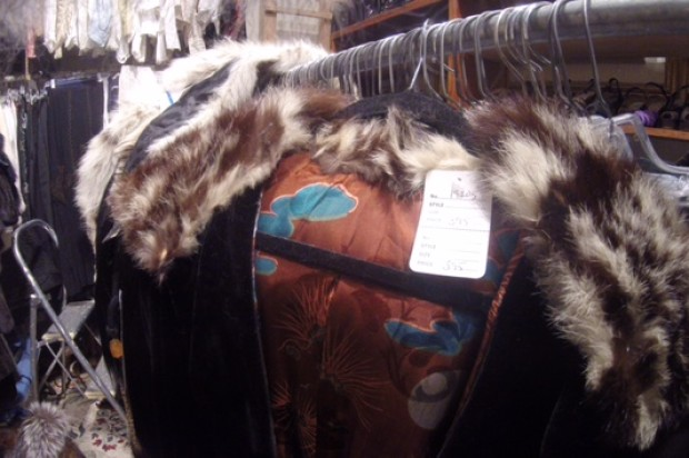 Fashion Store Investigated for Alleged Sale of Illegal Animal Goods