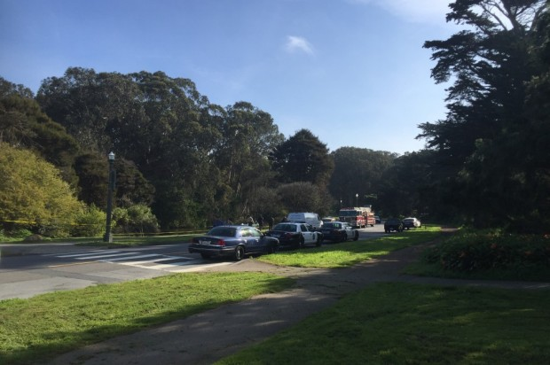 Body Found In Golden Gate Park This Morning